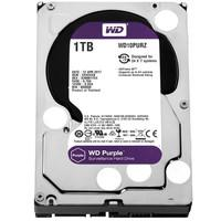 HD WD SATA 3,5´ Purple Surveillance 1TB IntelliPower 64MB Cache SATA 6.0Gb/s - WD10PURZ